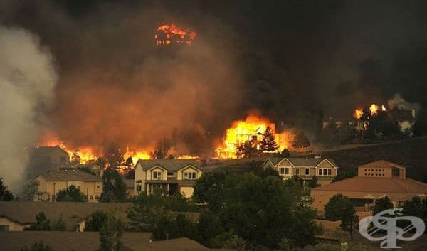 Големи горски пожари в Колорадо. Резултатът е промяна в климата.