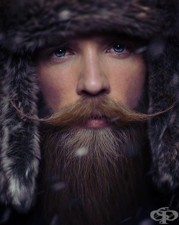 Не ви ли прилича на викинг?