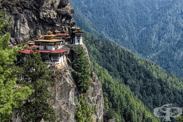 11. Бутан