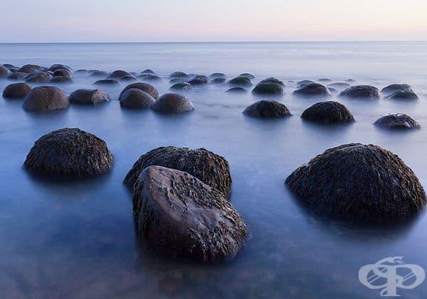 Боулиг плаж. Уникални каменни образования, които изглеждат като боулинг топки, са разположени по протежението на целия бряг. Най-доброто време за посещение е по време на отливите на водата.