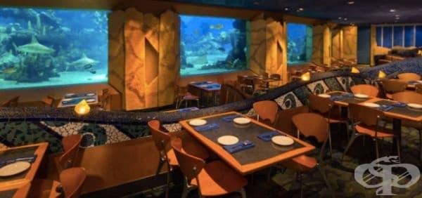 """Ресторант """"Coral Reef Restaurant"""", Орландо, Флорида. А това е ресторант директно в  Disney World."""