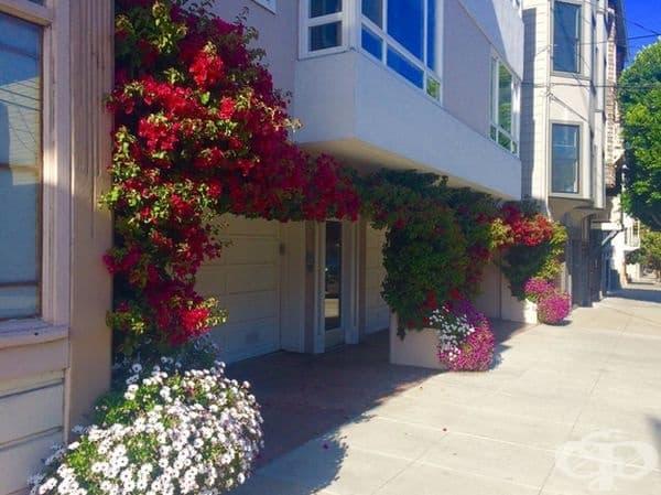 Вход на къща в  Сан Франциско.