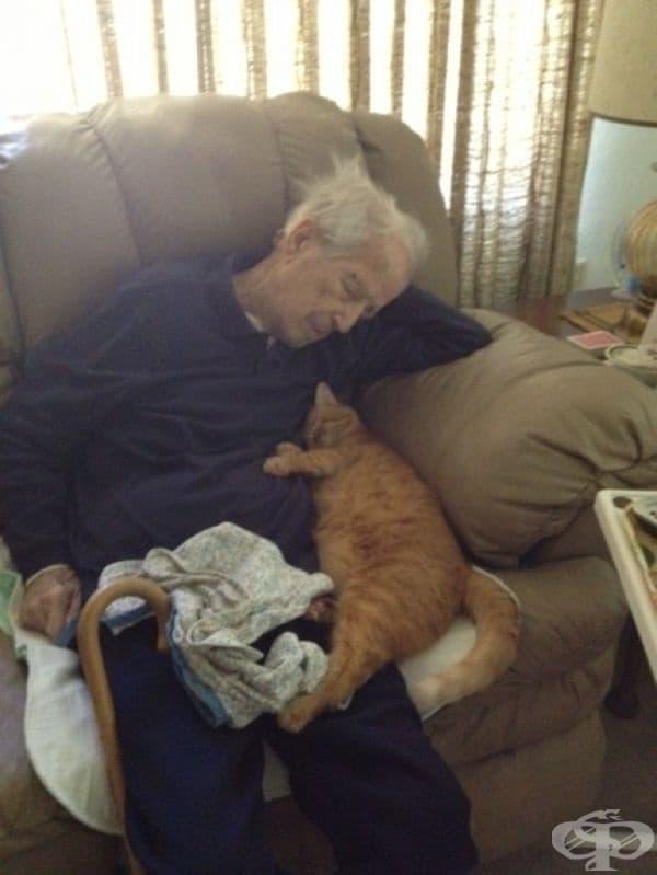100-годишен мъж и неговата 17-годишна котка.