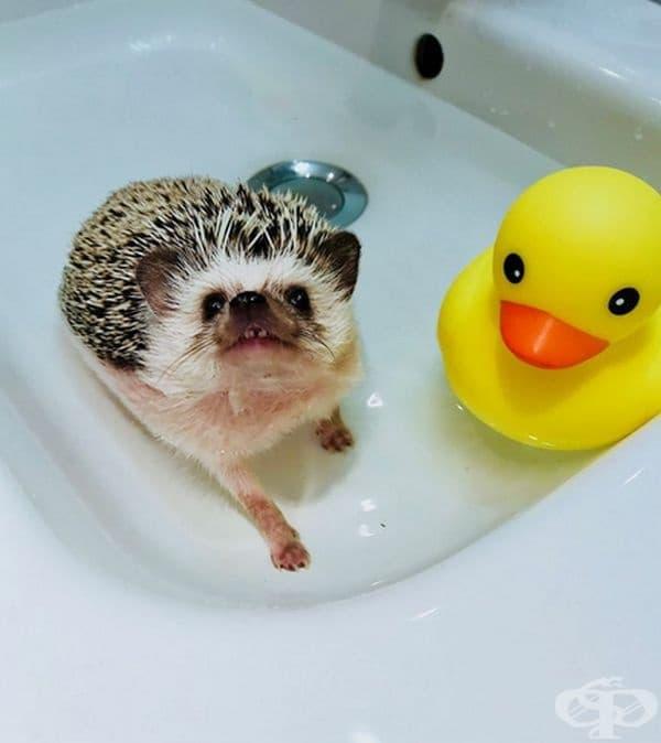 В банята.