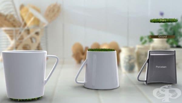 Чаши с тревисти дъна.