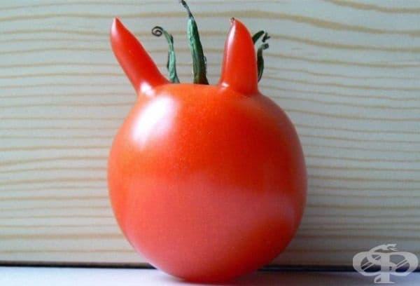 Дяволски домат.