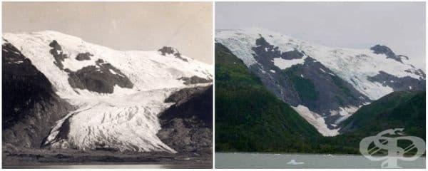 Ледник Тобоган, Аляска (юни 1909 - септември 2000).