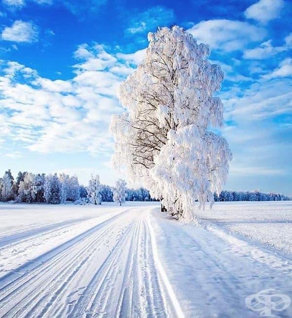 Снежен път. Норвегия.