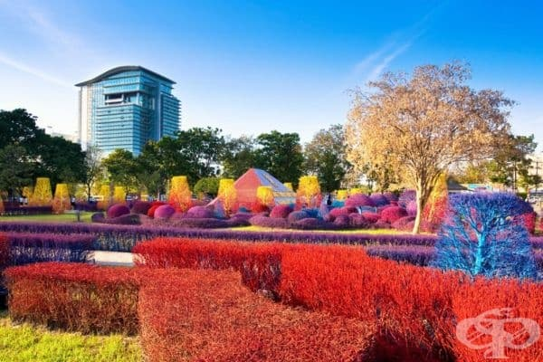 Университет Рангсит, Тайланд.