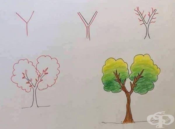 Y - се превръща в красиво дърво.