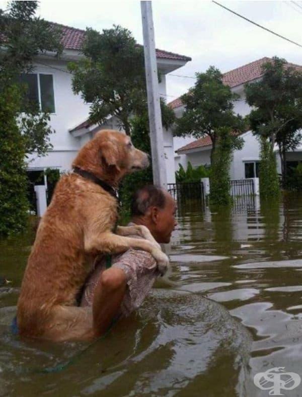Мъж спасява куче по време на наводнение в Тайланд.