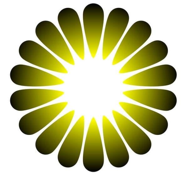 Стрували ви се, че от средата на цветето излиза ярка светлина?