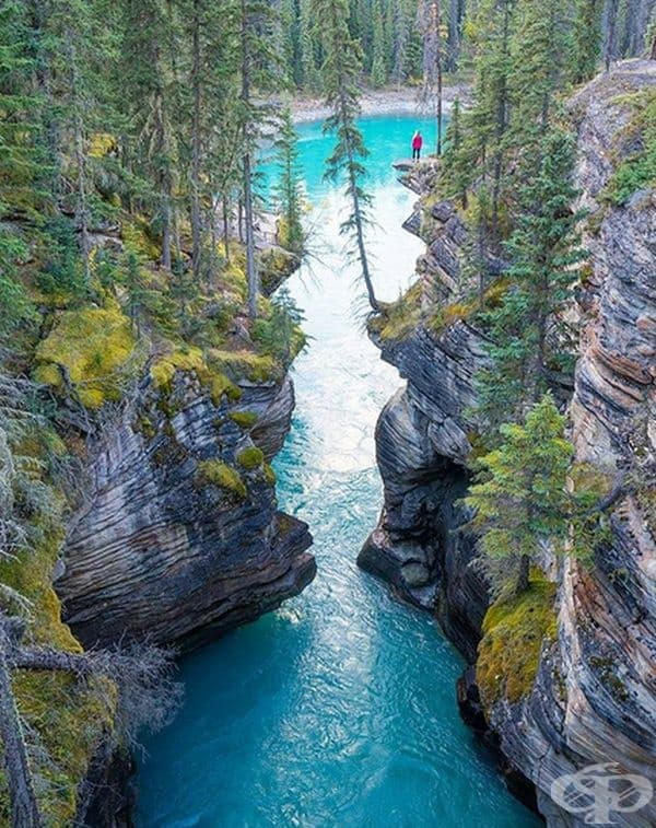 Тишина, спокойствие, чиста вода и въздух. Това великолепно място се намира близо до канадския град Алберта и там можете да се насладите на величието на Майката природа.