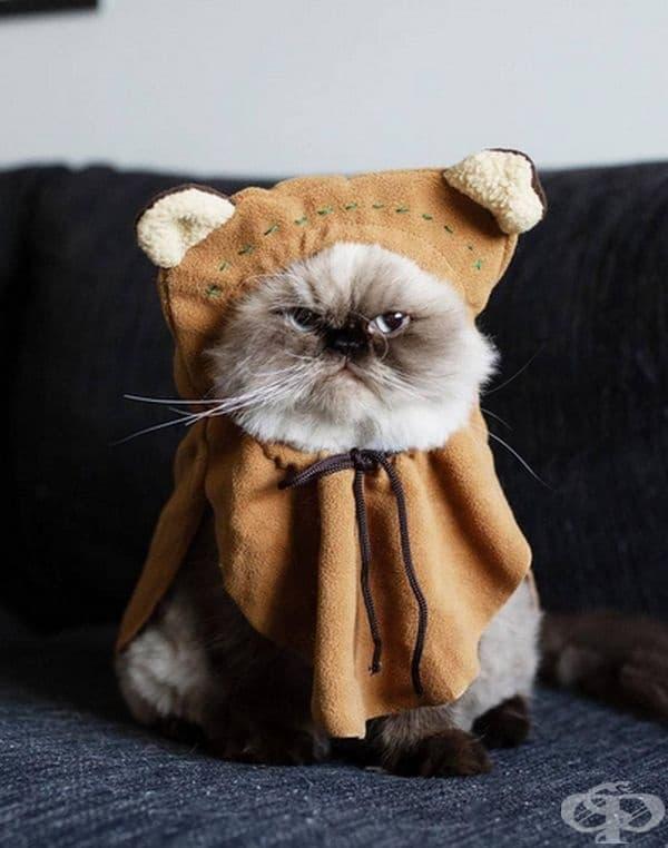 Очевидно, че интересните костюми не са му по вкуса.