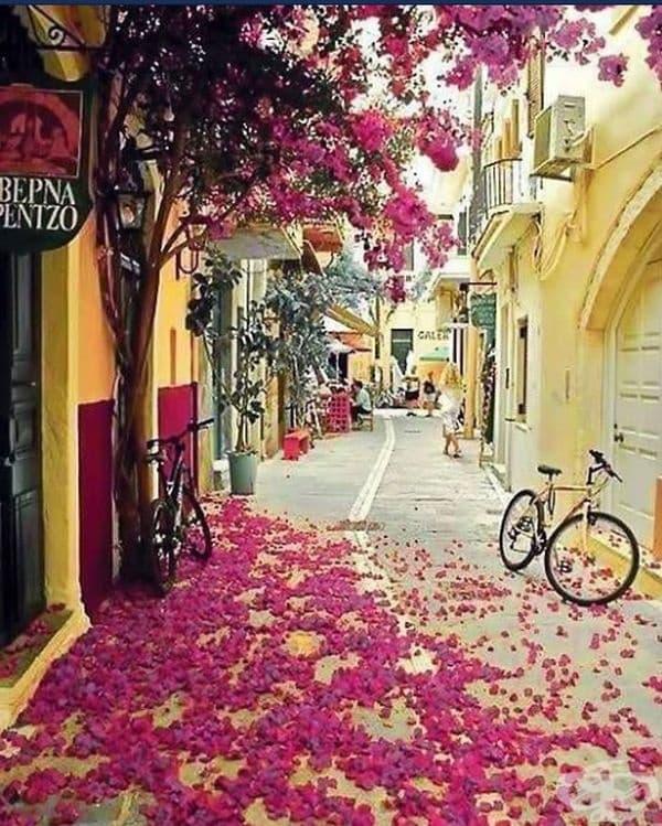 Ханя, Гърция.