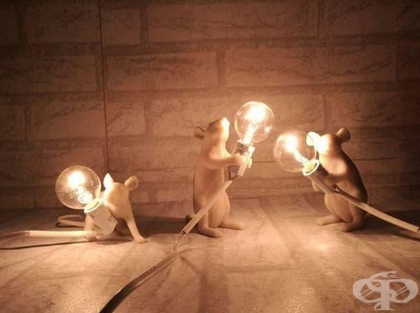 Осветителни тела за хора, които не се боят от мишки.