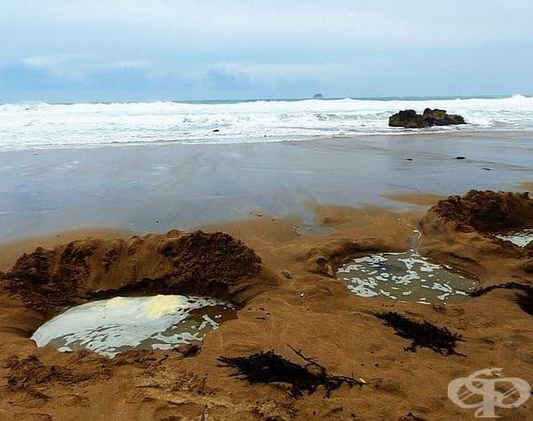 Горещият плаж, Нова Зеландия. Ако посетите този плаж, ще видите  плажуващи, които издълбават дупки и се потапят. Водата в тях е доста гореща и релаксираща.