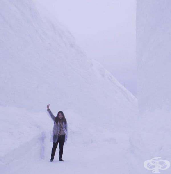 Разходката из целия алпийски маршрут може да отнеме повече от 6 часа.