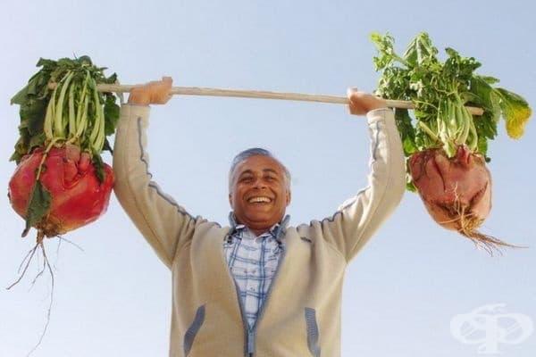 Нисан Тамир от Израел продава огромни зеленчуци лично производство. На тази снимка той държи репичка с тегло 21 кг.