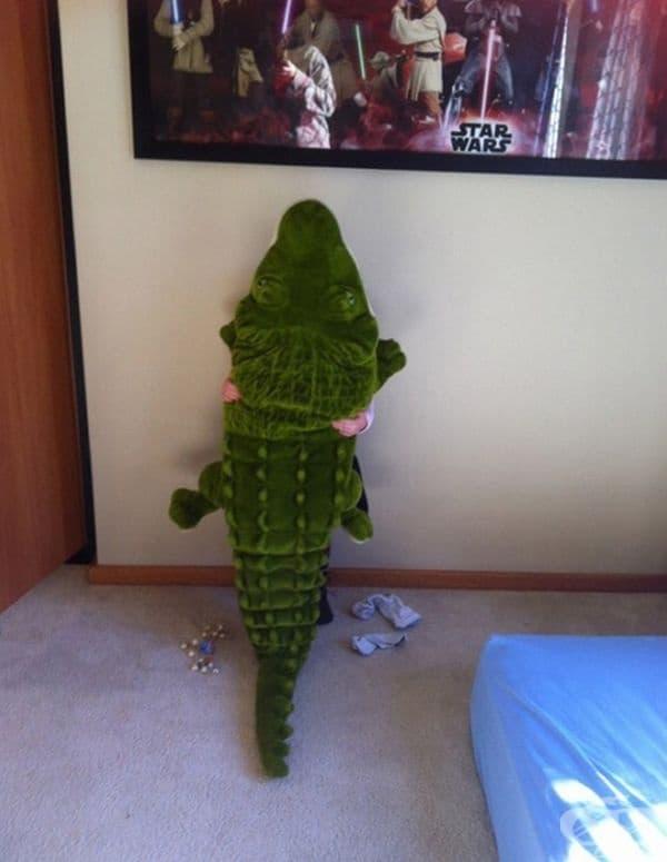 В тази стая има само един крокодил и нищо повече.
