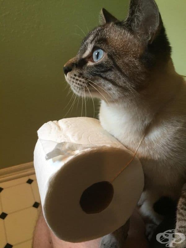"""""""Помолих за тоалетна хартия и ето какво ми изпрати жената."""""""