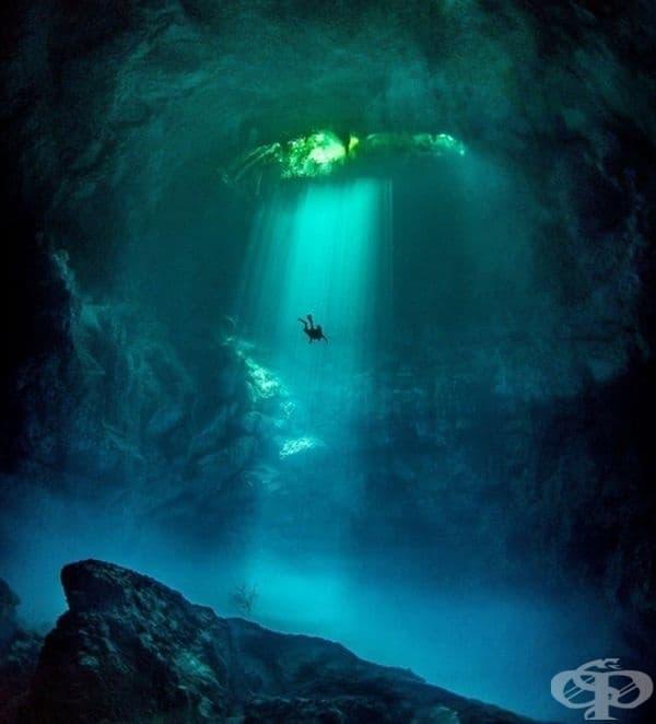 Рядък източник на прясна вода в Мексико с неограничена видимост под вода.