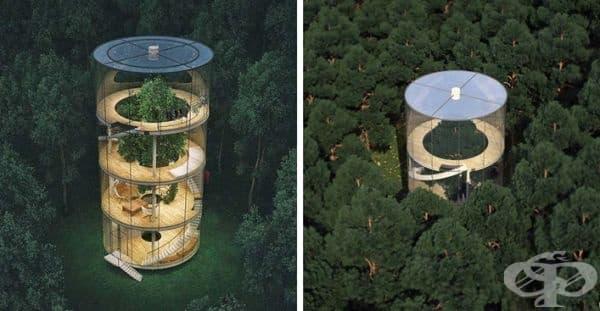 Архитект от Казахстан представи къщата на бъдещето, построена около дърво