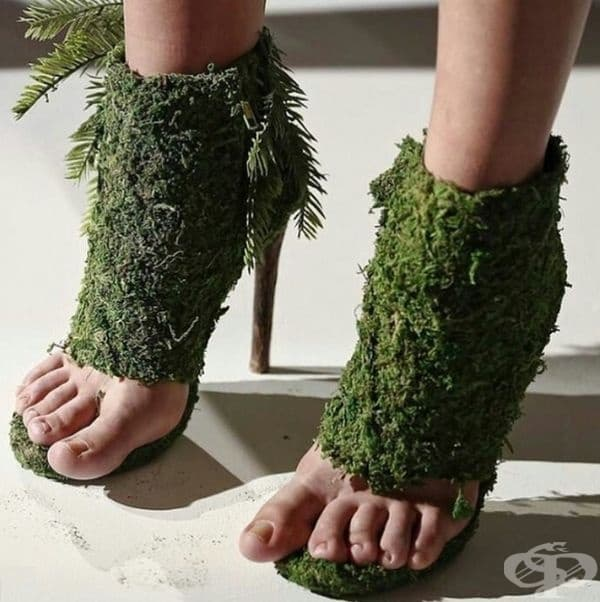 За да сте модерни и близо до природата.