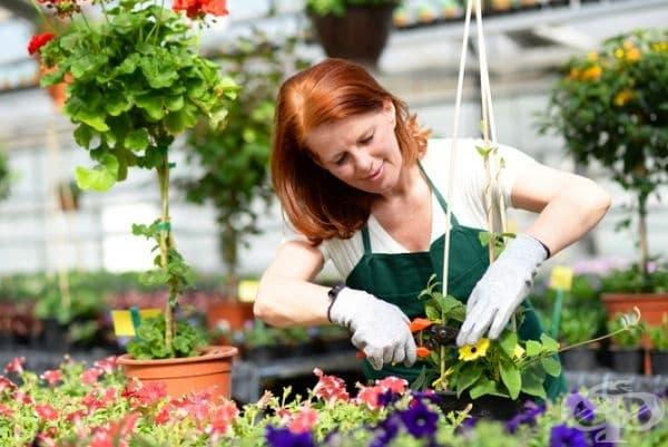 Отвлечете вниманието си с любими развлечения: грижа за градината, готвене, рисуване, четене на книга и т.н.