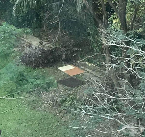 Картонът и канализационната решетка са разположени така, сякаш картонът е във въздуха над нея.