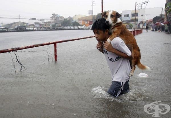 Приятелството означава, че винаги сте готови да помогнете.