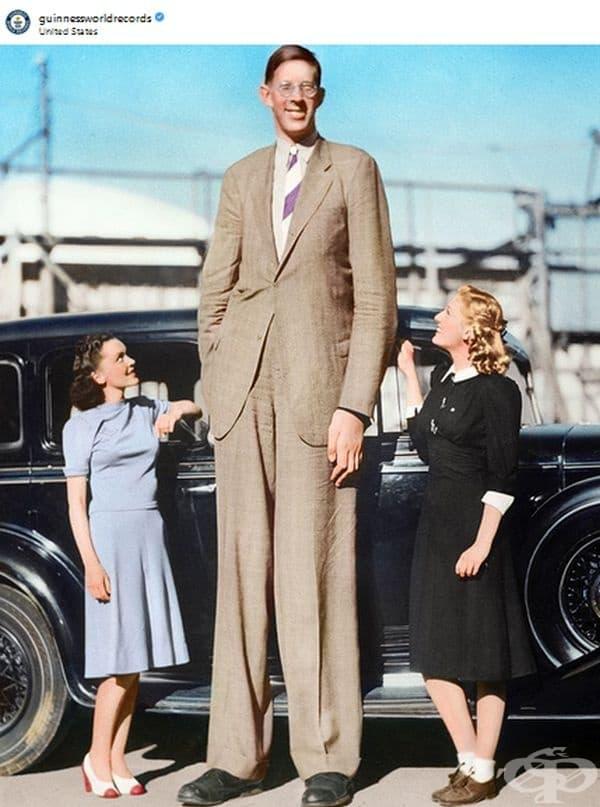 Робърт Першинг Уолдоу от САЩ е най-високият човек живял някога. Височината му се измерва с ослепителните 2,72 м. От 4-годишна възраст започва да расте много бързо поради тумор на хипофизата и акромегалия.