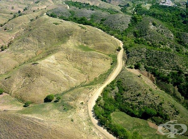 Хаити и Доминиканската република. При едните съществуват много строги закони за изсичането на дървета, а при другите очевидно не толкова.