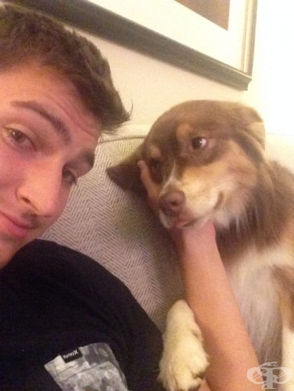 Опитайте се да намерите някой, който да ви гледа по същия начин, по който това куче наблюдава своя собственик.
