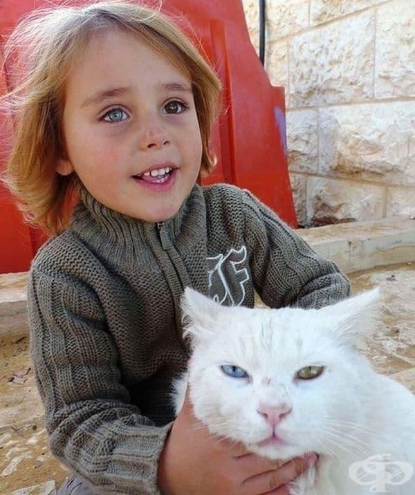 Момиченцето и котката имат еднакво различни очи.