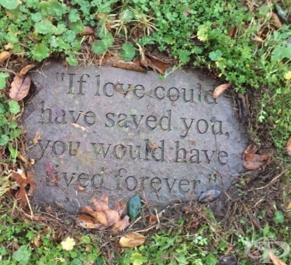 """Надпис върху надгробна плоча: """"Ако любовта можеше да те спаси, ти щеше да живееш завинаги."""""""