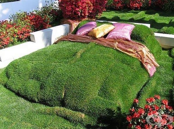 Зелено дърво за здрав сън.