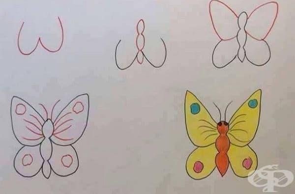W - е подходяща за пеперуда.