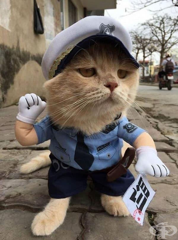 """Внимавайте """"Полиция""""."""