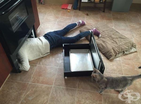 """""""Любимата игра на моята котка - бута вещи под печката и не спира да мяука, докато не ги извадя. Поне 5 пъти на ден."""""""
