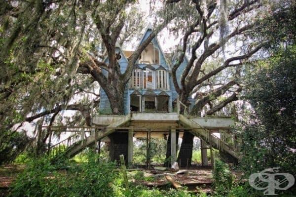 Къща на дървото, Флорида, САЩ.