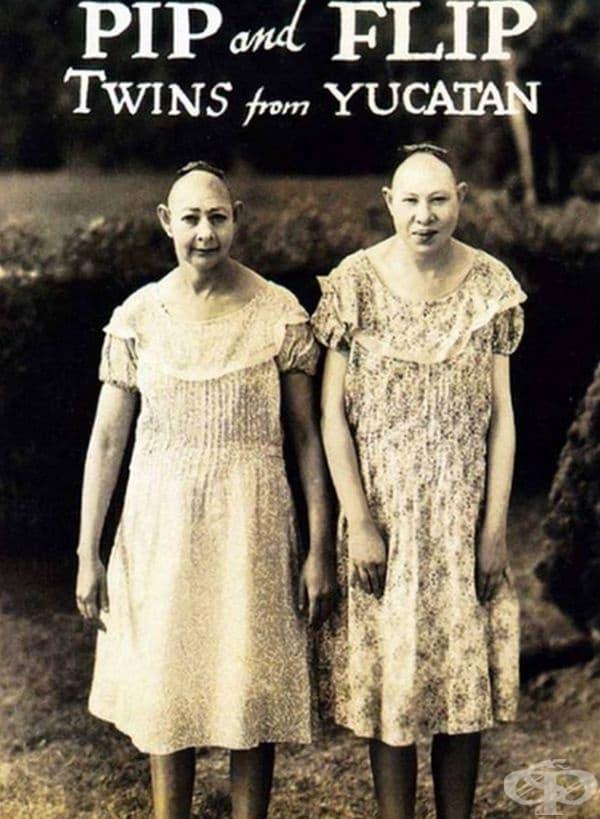 Близнаците Пип и Флип от Юкатан.