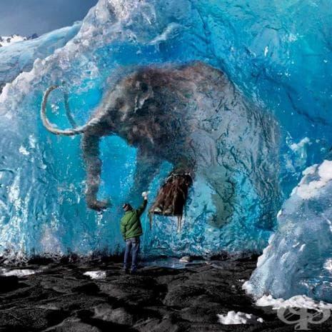 25 изумителни снимки от различни части на света, които ще докоснат сетивата ви