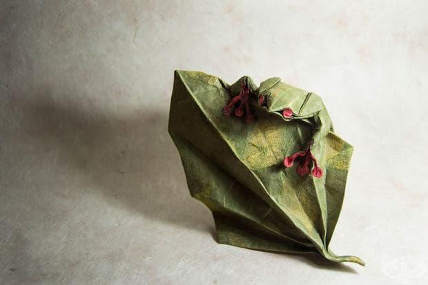 Удивително оригами, създадено от испанския творец Гонсало Гарсия Калво