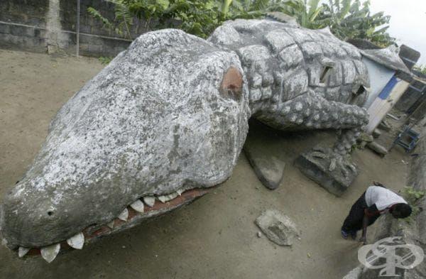 "Къща ""Крокодил"", Кот д'Ивоар"