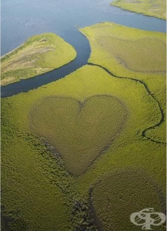 Сърце на остров Нова Каледония