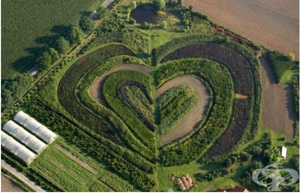 Градина с форма на сърце в Германия