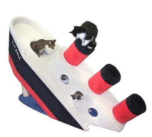 """""""Титаник"""" за котки"""