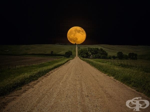 Път за никъде, Южна Дакота  (Фотограф: Aaron J. Groen).
