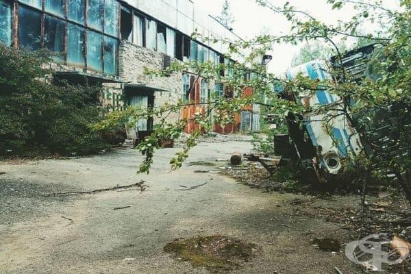 """Завод """"Юпитер"""" не е бил затворен след инцидента, а е бил преоборудван в лаборатория за радиологични измервания."""